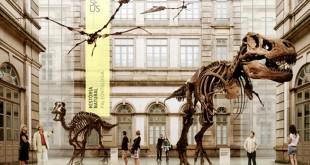 museu historia ciencia